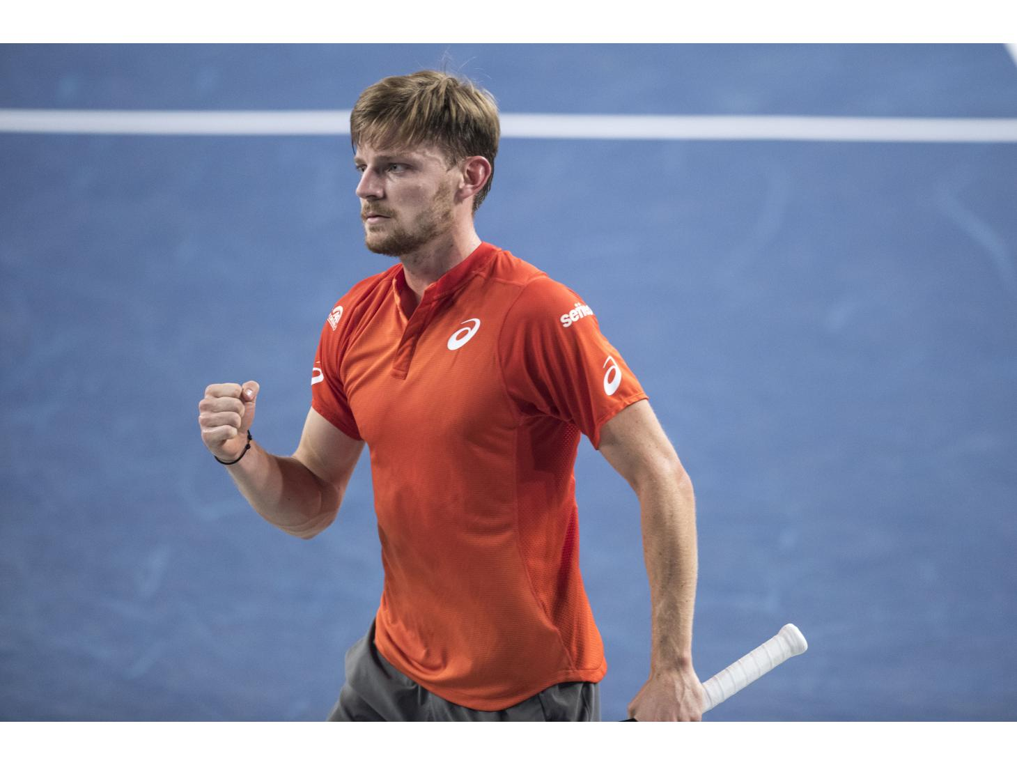 Goffin too good for Paire